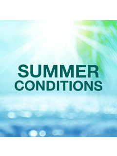 Summer Conditions