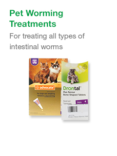 Pet Worming Treatments