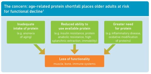 protein needs of adults