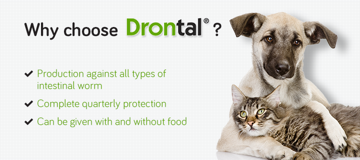 Why Choose Drontal