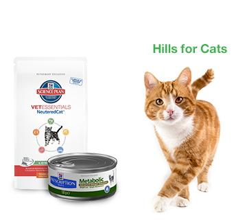 Hills For Cats
