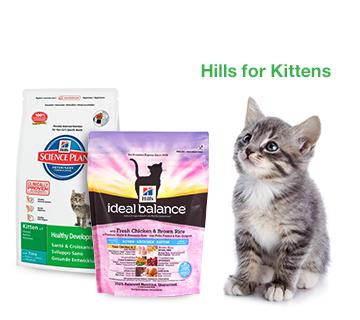 Hills For Kittens