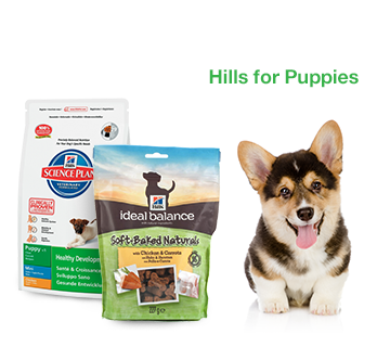 Hills For Puppies