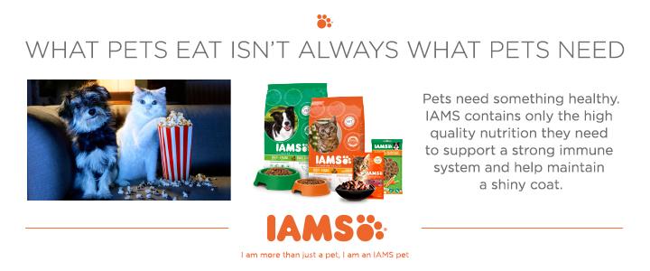 IAMS Pet Food