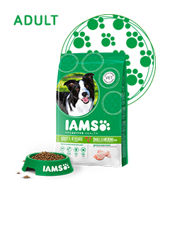 IAMS Adult Dog