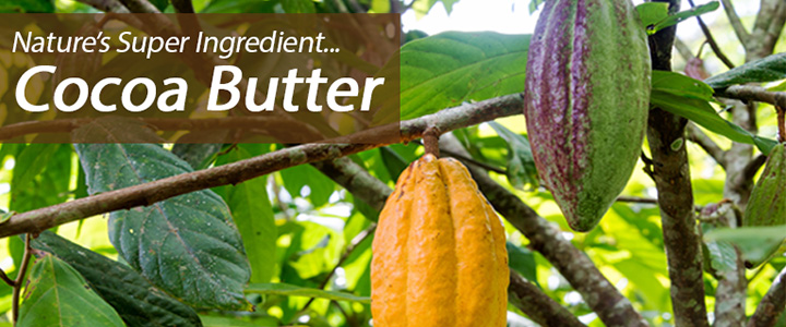 Nature's Super Ingredient Cocoa Butter